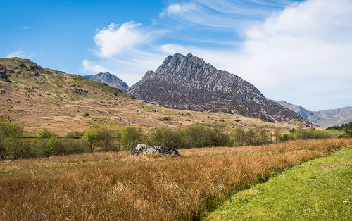 Tryfan's characteristic North ridge as seen from the valley.